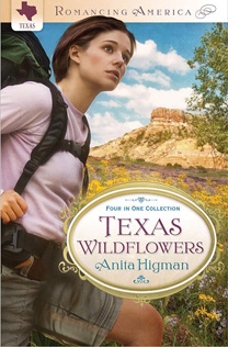 Texas Wildflowers Book Cover